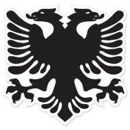 Albanian National Flag Bumper Sticker eagle 5